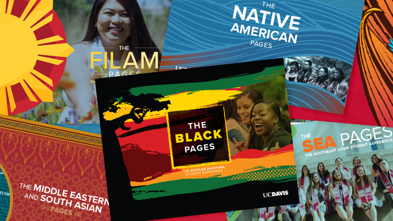 The six cultural guides SAMC created highlight resources for undergraduates.